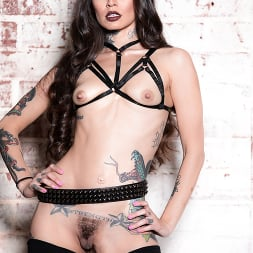 Vanessa Vega in 'Burning Angel' Cum on my Tattoo - Vanessa Vega (Thumbnail 14)